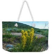 Wyoming Wildflowers Indian Paintflowers Weekender Tote Bag