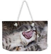 Yawning Kitten Weekender Tote Bag