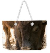 Waco Texas Buffalo Nose Drip Weekender Tote Bag