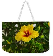 Yellow - Beautiful Hibiscus Flowers In Bloom On The Island Of Maui. Weekender Tote Bag