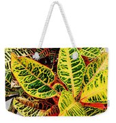 Yellow And Green Croton Weekender Tote Bag