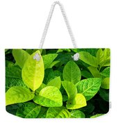 Yellow And Green Leaves Weekender Tote Bag
