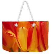 Yellow And Red Striped Tulips Weekender Tote Bag
