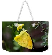 Yellow And Yellow Sulphur Butterfly Weekender Tote Bag