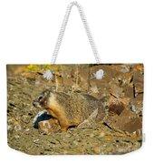 Yellow-bellied Marmot Weekender Tote Bag
