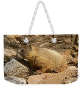 Yellow Bellied Marmot Checking Out The Neighborhood In Rocky Mountain National Park Weekender Tote Bag