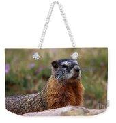 Yellow Bellied Marmot Weekender Tote Bag