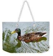 Yellow Billed Duck Weekender Tote Bag