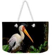 Yellow Billed Stork Peers At Camera Weekender Tote Bag