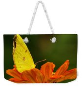 Yellow Cabbage Moth Weekender Tote Bag