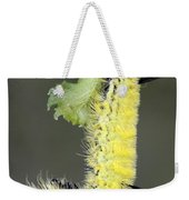 Yellow Caterpillar 1 Weekender Tote Bag