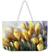 Yellow Crocuses In The Snow Weekender Tote Bag