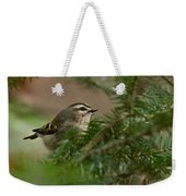 Yellow-crowned Kinglet Weekender Tote Bag