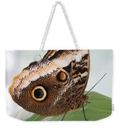 Yellow-edged Giant Owl Butterfly #3 Weekender Tote Bag