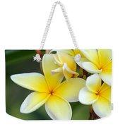 Yellow Frangipani Flowers Weekender Tote Bag