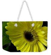 Yellow Gerbera Daisy  Weekender Tote Bag