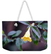 Yellow Green And Red Weekender Tote Bag