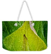 Yellow Green Skunk Cabbage Square Weekender Tote Bag