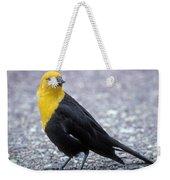 4m09157-02-yellow Headed Blackbird Weekender Tote Bag