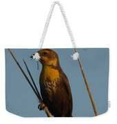 Yellow-headed Blackbird With Dragonfly Weekender Tote Bag