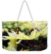 Yellow Japanese Maple Weekender Tote Bag