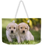 Yellow Labrador Puppies Weekender Tote Bag