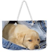 Yellow Labrador Puppy In Jeans Weekender Tote Bag