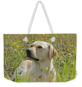 Yellow Labrador Retriever Weekender Tote Bag