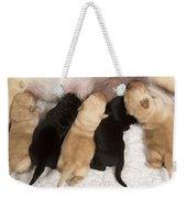 Yellow Labrador Suckling Puppies Weekender Tote Bag