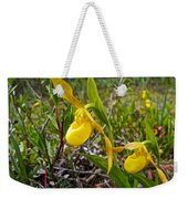 Yellow Lady Slippers Along Emerald Lake Trail In Yoho Np-bc Weekender Tote Bag