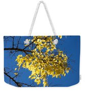 Yellow Leaves In Fall And Deep Blue Sky Weekender Tote Bag