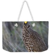 Yellow-necked Francolin... Weekender Tote Bag