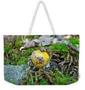 Yellow Patches Baby Mushroom - Amanita Muscaria Weekender Tote Bag