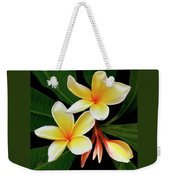 Yellow Plumeria Weekender Tote Bag by Ben and Raisa Gertsberg