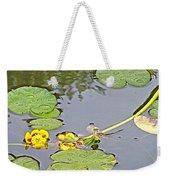 Yellow Pond Lilies On Lake Yellowhead Along Yellowhead Highway-b Weekender Tote Bag
