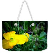 Yellow Poppy Xl Format Floral Photography Weekender Tote Bag