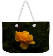 Yellow Rose Dapples With Waterdfrops Weekender Tote Bag