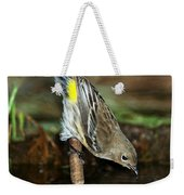 Yellow-rumped Warbler Drinking Weekender Tote Bag