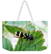 Yellow Stripped Beetle Weekender Tote Bag