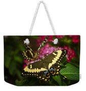 Yellow Swallowtail Butterflies  Weekender Tote Bag