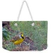 Yellow-throated Longclaw Weekender Tote Bag