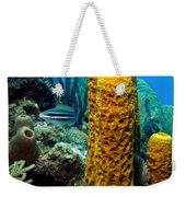 Yellow Tube Sponge Weekender Tote Bag