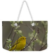 Yellow Warbler -1 Weekender Tote Bag