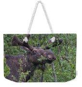 Yellowstone Munching Moose Weekender Tote Bag
