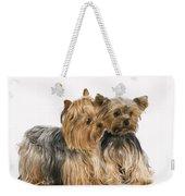 Yorkshire Terrier Dogs Weekender Tote Bag