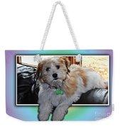 Yoshi Havanese Puppy Weekender Tote Bag by Barbara Griffin