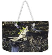 You Are Not A Bird Weekender Tote Bag