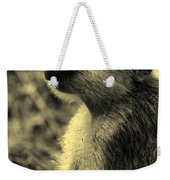 Young Baboon In Black And White Weekender Tote Bag