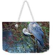 Young Blue Heron Preening Weekender Tote Bag