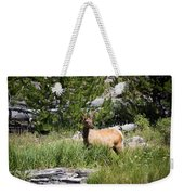 Young Bull Elk - Yellowstone National Park - Wyoming Weekender Tote Bag